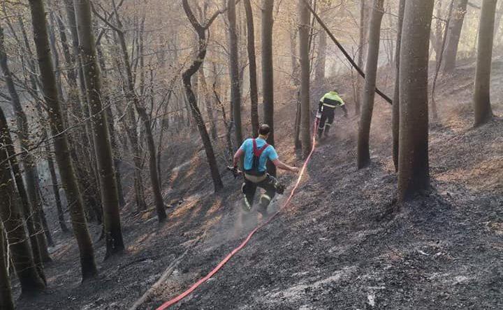Gozdni požar na Vnajnarjih 10.4.2020