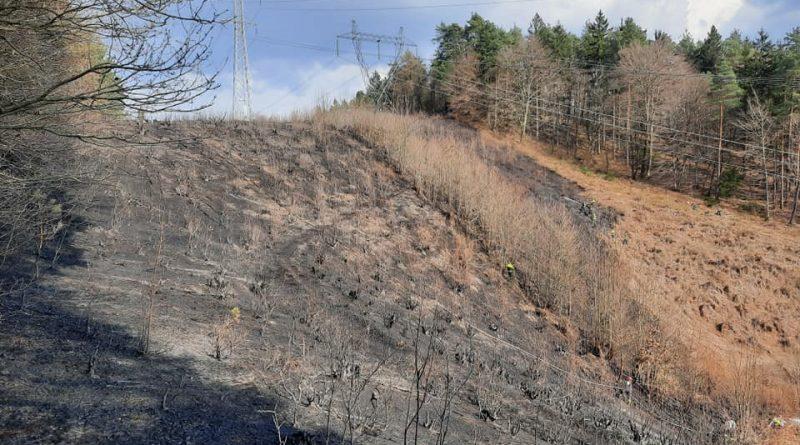 Gozdni požar na Debnem vrhu 21.3.2020